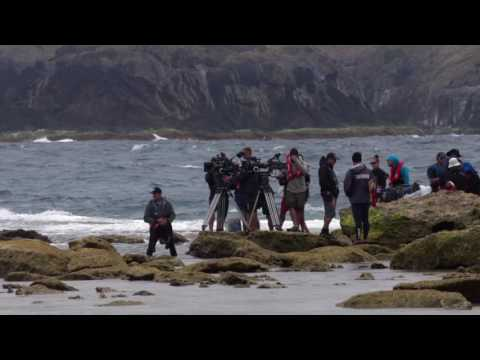 The Shallows: Finding the Perfect Beach Lord Howe Island Grym