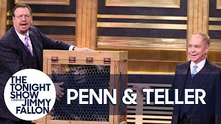 Penn & Teller Give a Lesson in Misdirection Using a Vanishing Chicken