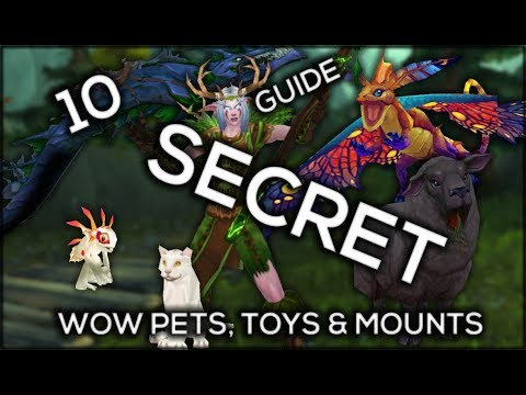 10 SECRET PETS, TOY & MOUNT AND HOW TO GET THEM IN LEGION