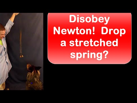 Disobey Newton!  Drop a stretched spring! Won't believe it til you see it.