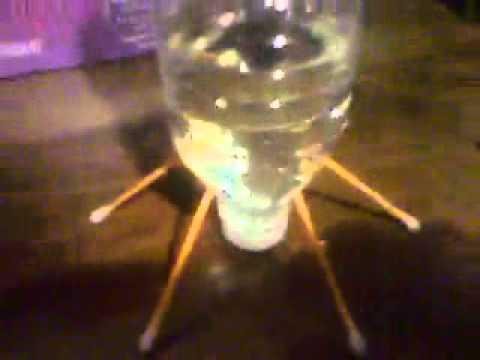 Diy Cricket auto water container