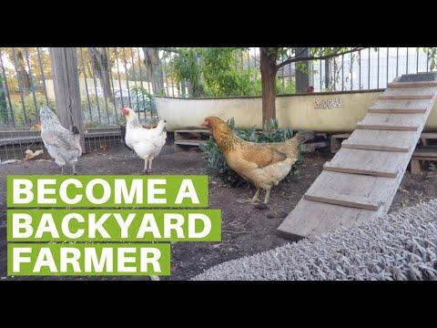 Eugene Backyard Farmer- Become a Farmer in your Backyard