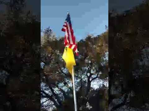 Flag up at the California state Militia -Facebook Live