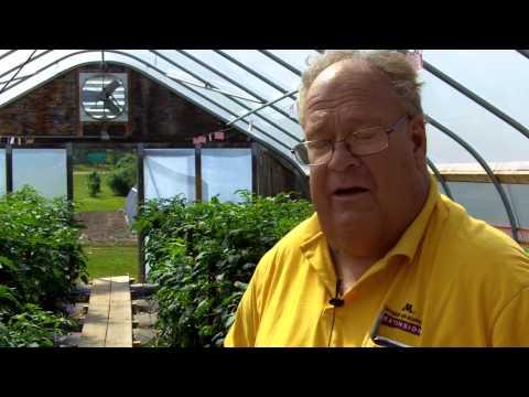 Terrance T. Nennich | Horticulture Director