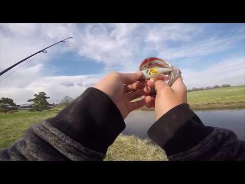 Rattle Trap Bass Fishing