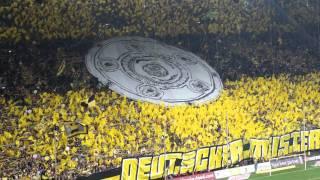 Bvb Dortmund Gänsehaut Im Westfalenstadion!