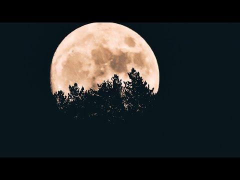 Live New Moon Manifestation Ritual