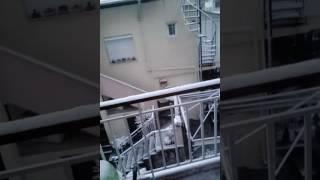 [Ενημερωτικό βίντεο](#2)