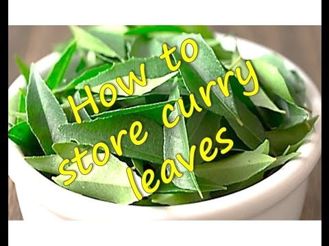 How to store | freeze  Curry Leaves | RinkusRasoi