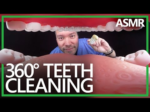 360° Dentist Teeth Cleaning (ASMR, 4K)