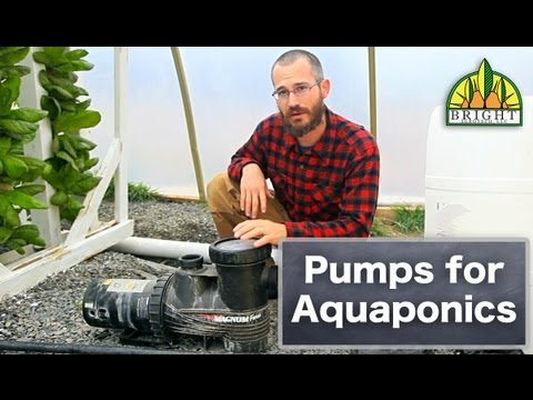 Things to Consider When Choosing a Pump