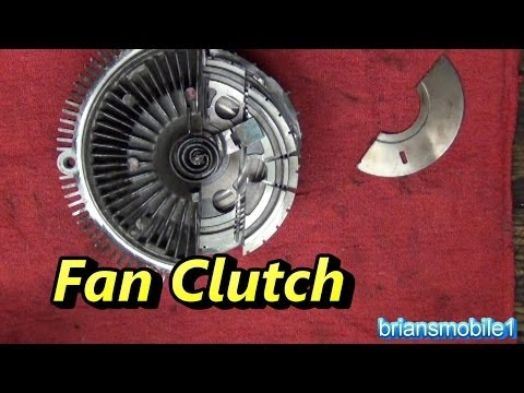 Fan Clutch Explo-tionation