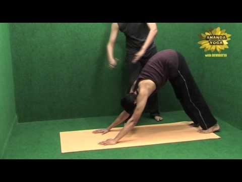 Yoga to Increase Body Stamina and Flexibility