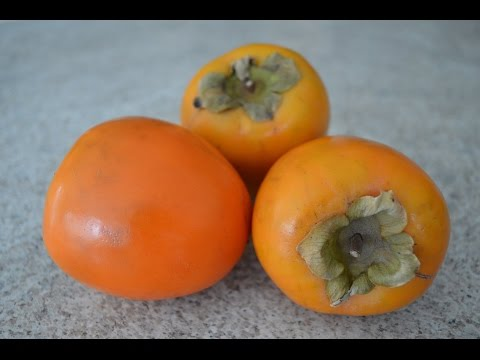 How to Prepare & Eat Persimmons - aka Sharon Fruit: Cooking with Kimberly