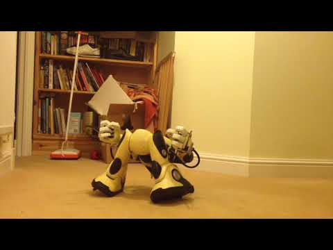 Fixing Wowwee Robotics RSV2 Robosapien V2 Part 8