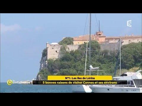 5 bonnes raisons de visiter Cannes et ses environs