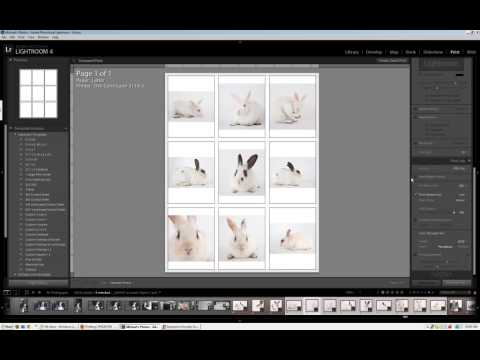 Making a Contact Sheet in Lightroom