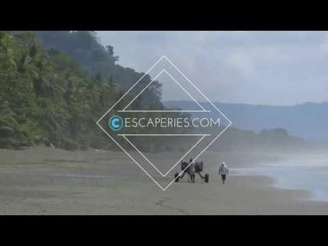 ESCAPERIES: Most Epic Hiking Trail: Corcovado National Park