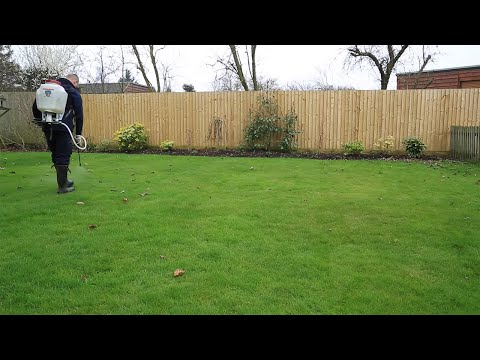 Lawn Feed and Weed Programmes - Lawn Master