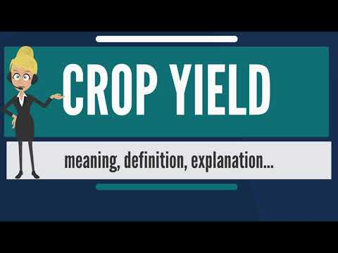 What is CROP YIELD? What does CROP YIELD mean? CROP YIELD meaning, definition & explanation