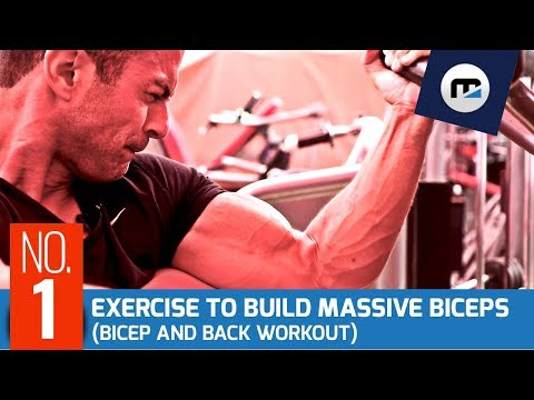 ⚠️ Number 1 Exercise to Build Massive Bicep Peak 💪 [NEW Biceps and Back Workout]