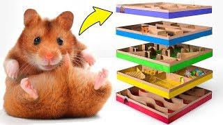 Incrível labirinto DIY de 5 níveis para Hamsters ativos 🐹