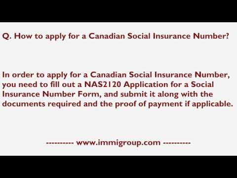 How to apply for a Canadian Social Insurance Number?