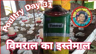 विमराल का इस्तेमाल | Poultry Day-31 | Vimeral use in poultry | The Bro Poultry
