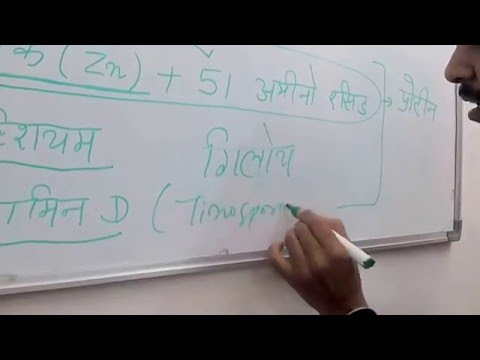 Manage Type 1 Diabetes with Zinc, Calcium and Vitamin D ( Hindi)