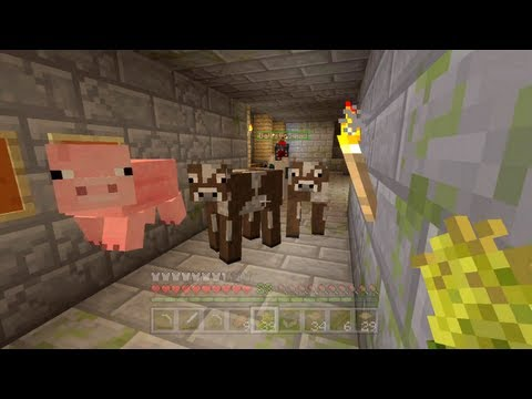 Minecraft Xbox - Quest To Kill The Ender Dragon - Animal Friends - Part 17