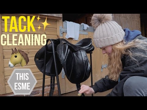 TACK CLEANING | How to clean a Saddle and Bridle | This Esme