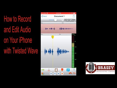 How to Record and Edit Audio on iPhone with Twisted Wave