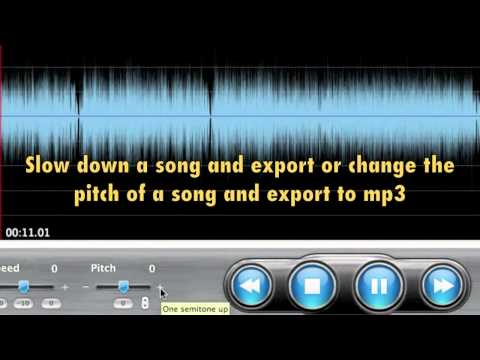 saving loops slowed down songs or changed pitch riffmaster pro