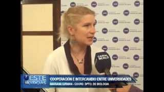 CONVENIO MARCO ENTRE UNIVERSIDADES -  MARIANA IURMAN PROFESORA