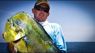 Download Dolphin Catch Clean and Cook (Mahi-Mahi, Dorado) Video