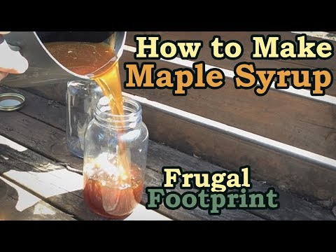 How To Make Maple Syrup - DIY Organic