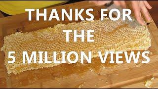 mudsongs.org: Cutting & Bottling Honey