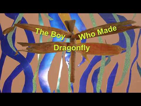 The Boy Who Made Dragonfly Book Trailer