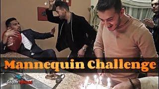 Birthday Mannequin Challenge Ft. Desi YouTubers