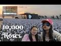 10,000 Roses Cafe and Lantaw Native Restaurant, Cordova Cebu Philippines | VLOG 02