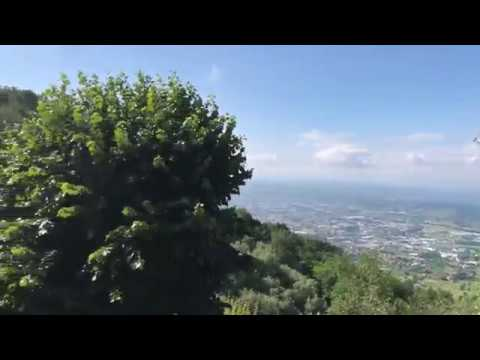 Pescia video 01