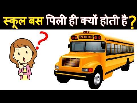 Why All The School Buses Are Painted Yellow In Color ? स्कूल बस का रंग पीला ही क्यों होता है?