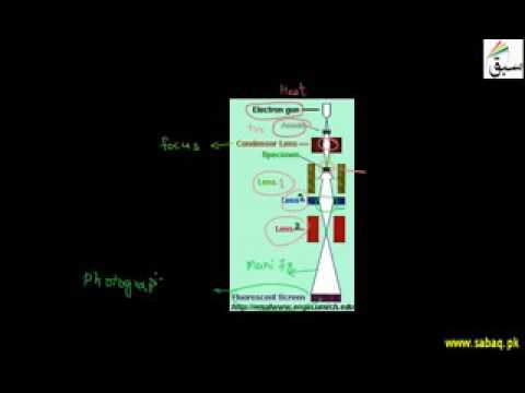 Introduction to Electron Microscope