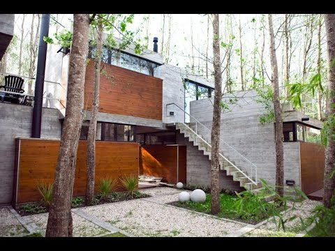 Beautiful Modern House Design Built Surrounded by Its Original Uncut Trees