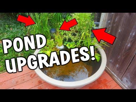DIY Pond UPGRADES! -  Deck Pond Update 1