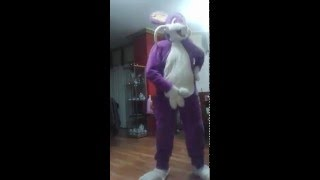 Rattata What Does The Fox Say