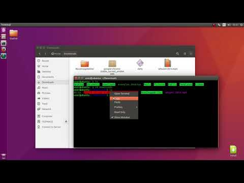 How to install Google Chrome on Linux (Debian Based)