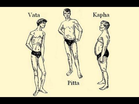 The Ayurvedic Body Types and Their Characteristics (Vata Pitta Kapha)
