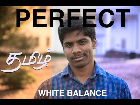 Cheapest way to PERFECT White Balance | Learn Photography in Tamil | V2K Photography