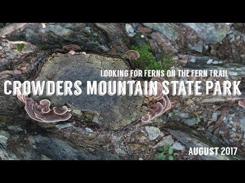 Crowders Mountain State Park | August 2017 | Wandering Around In Wonder